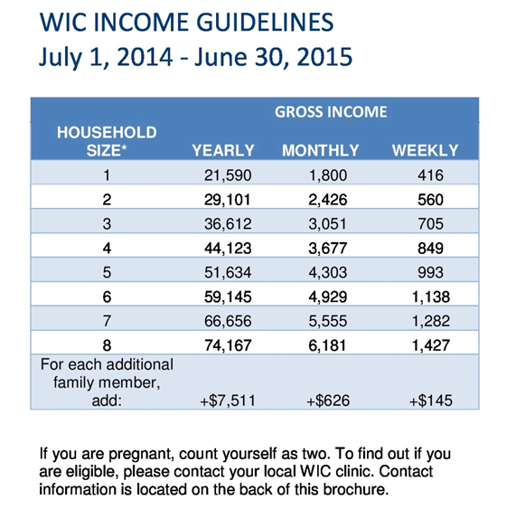 Iowa Food Stamp Income Guidelines